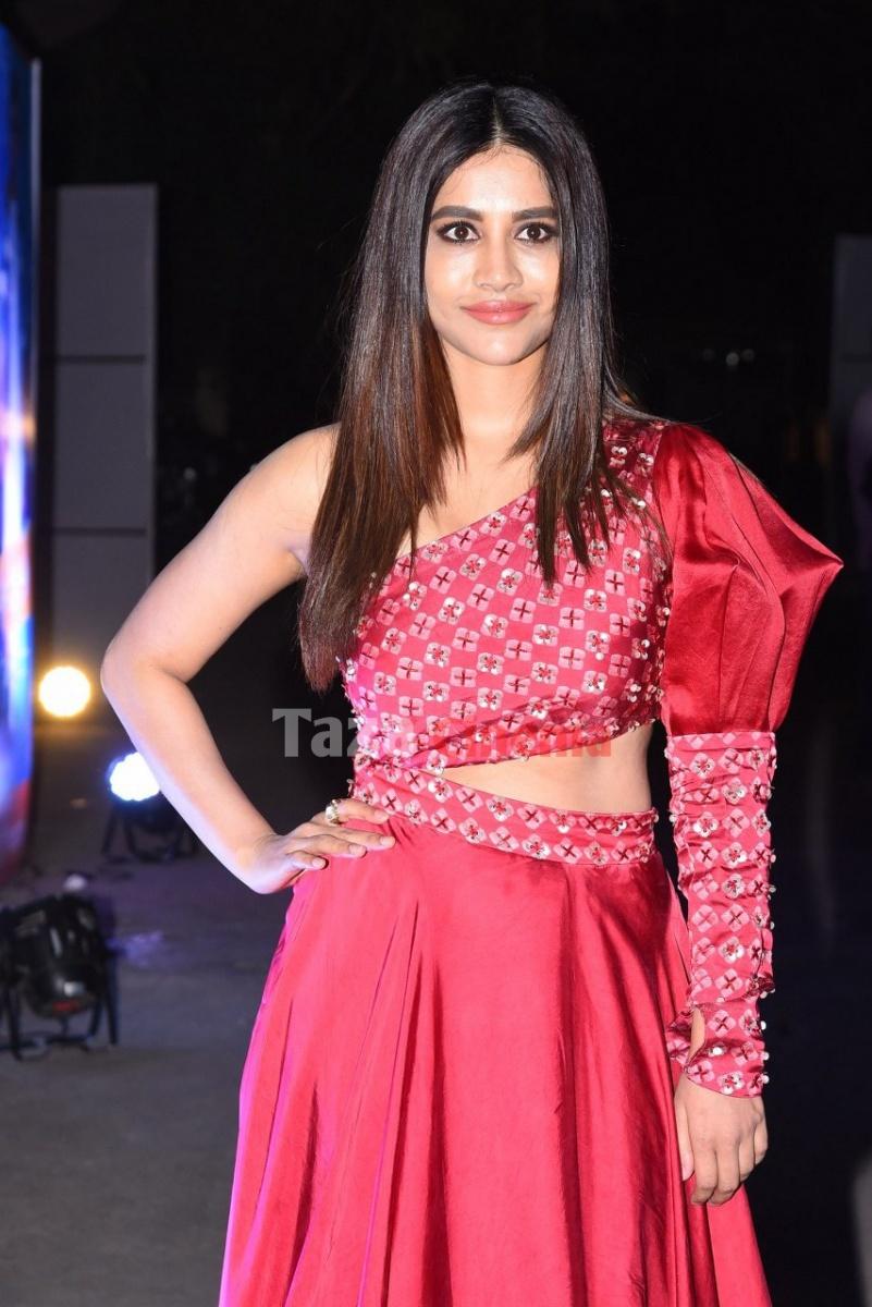 Nabha-Natesh-Photos-1
