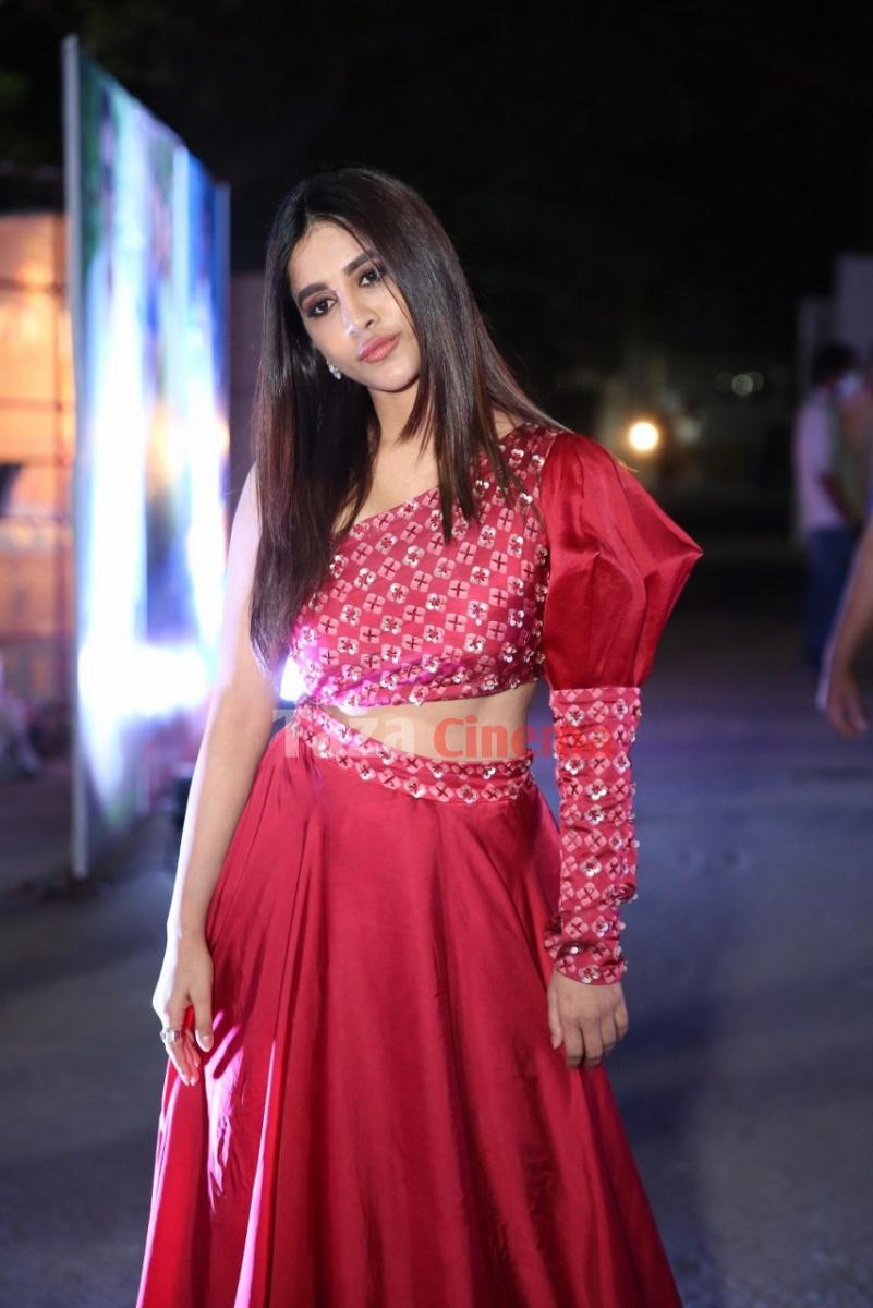 Nabha-Natesh-Photos-5