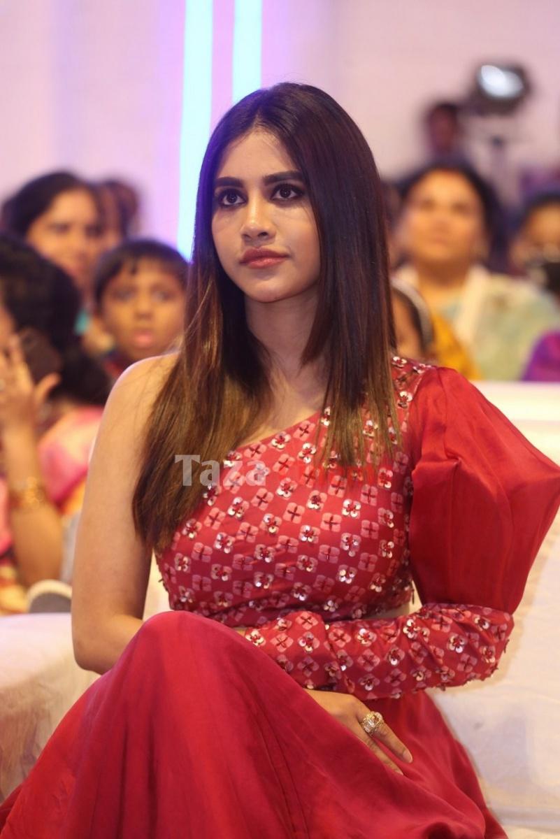Nabha-Natesh-Photos-9